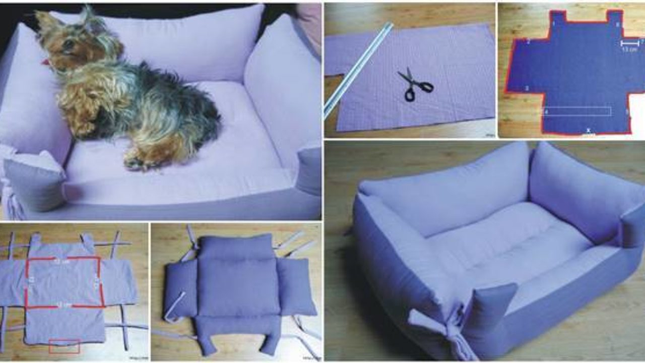 Cool Diy Couch Pet Bed Evergreenethics Interior Chair Design Evergreenethicsorg