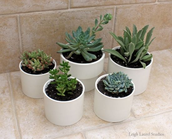 30+ Creative Uses of PVC Pipes in Your Home and Garden --> PVC Succulent Planters