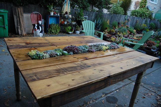 30+ Creative Pallet Furniture DIY Ideas and Projects --> DIY Succulent Pallet Table