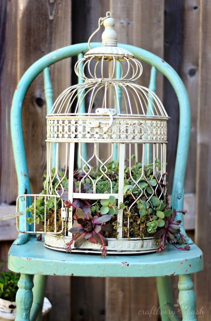 40+ Creative DIY Garden Containers and Planters from Recycled Materials --> Bird Cage Planter