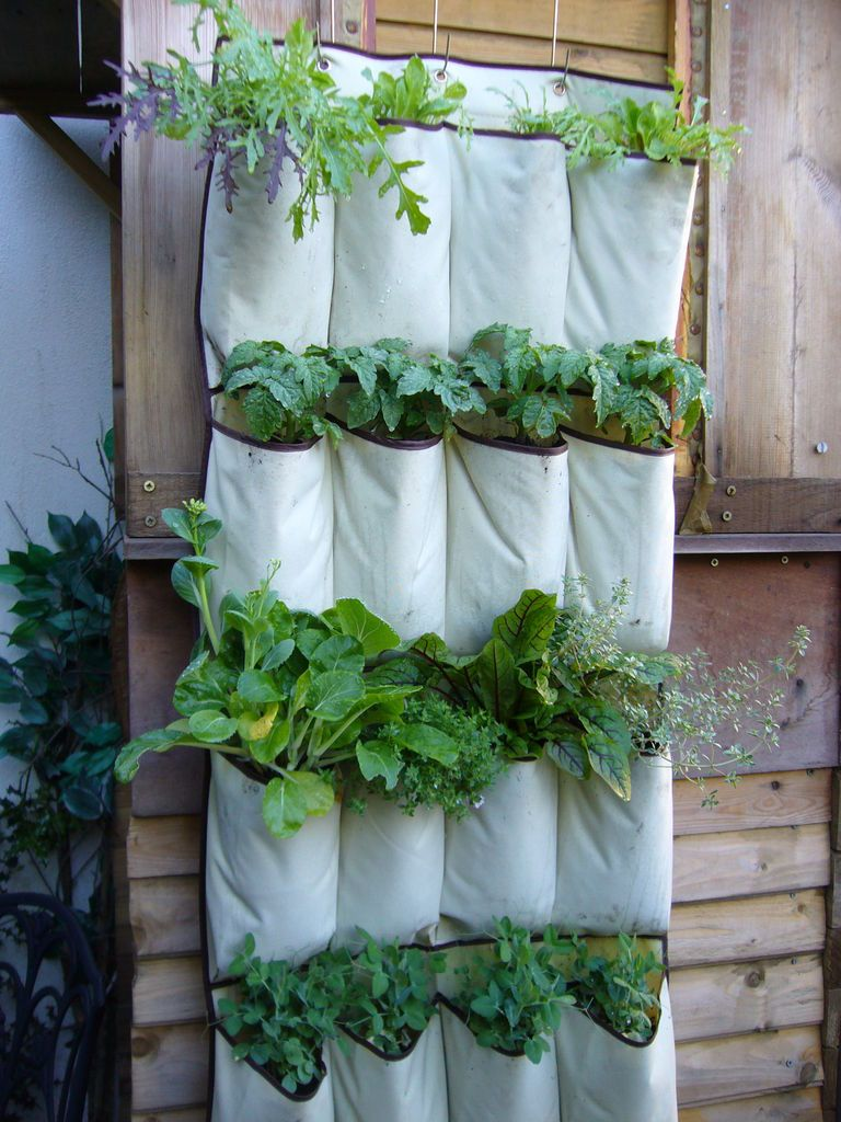 40+ Creative DIY Garden Containers and Planters from Recycled Materials --> Upcycled Shoe Organizer Planter