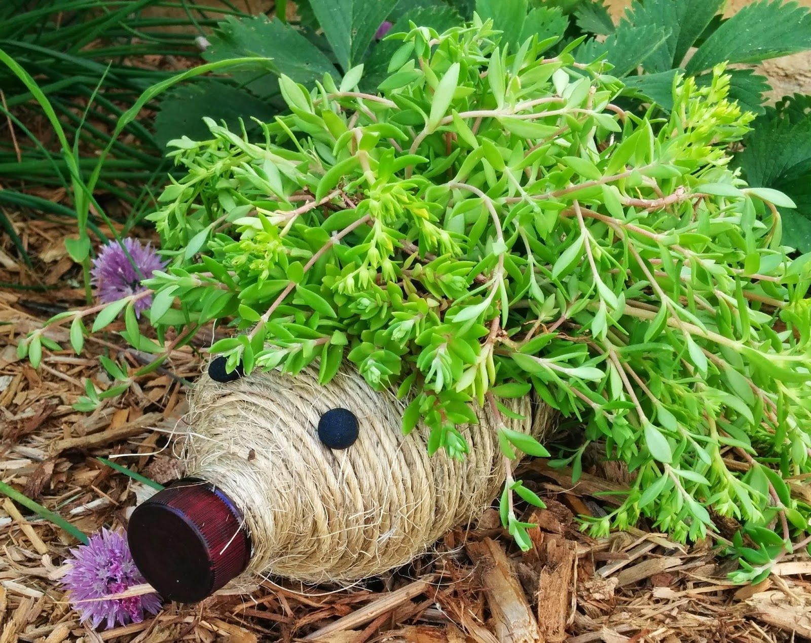 40+ Creative DIY Garden Containers and Planters from Recycled Materials --> DIY Hedgehog Planter from Plastic Bottle