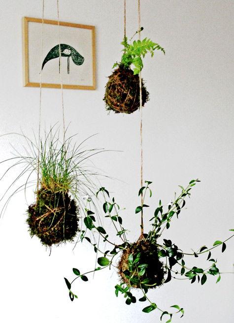 20+ Creative DIY Vertical Gardens For Your Home --> DIY Suspended String Garden