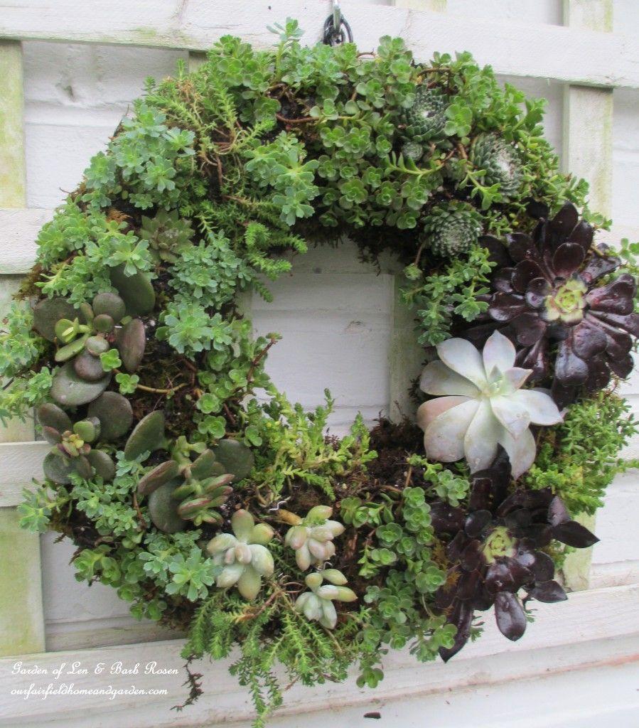 20+ Creative DIY Vertical Gardens For Your Home --> DIY Succulent Wreath