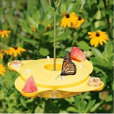 Creative Ideas - DIY Amazing Butterfly Feeder 2