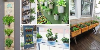 35+ Creative DIY Herb Garden Ideas