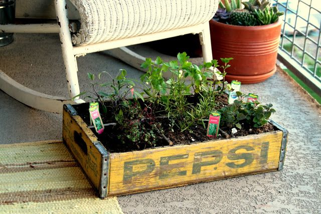 how to build a kitchen herb box