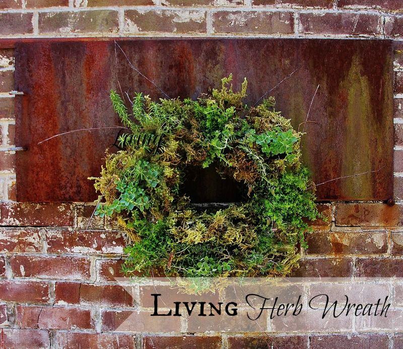 35+ Creative DIY Herb Garden Ideas --> DIY Living Herb Wreath