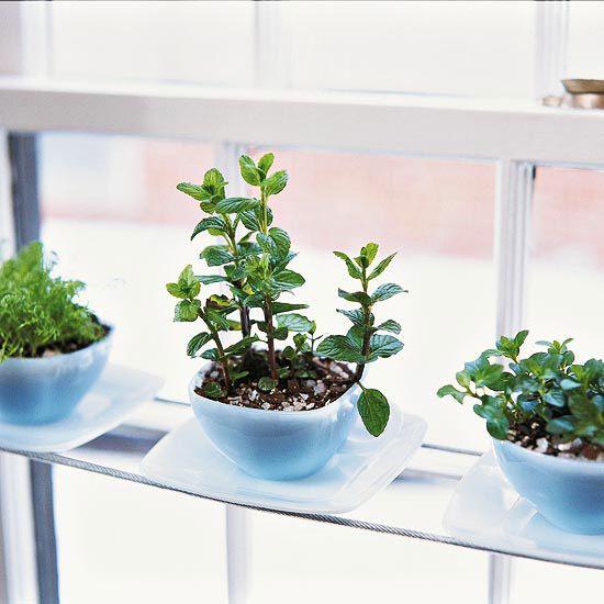 35+ Creative DIY Herb Garden Ideas --> DIY Teacup Herb Garden