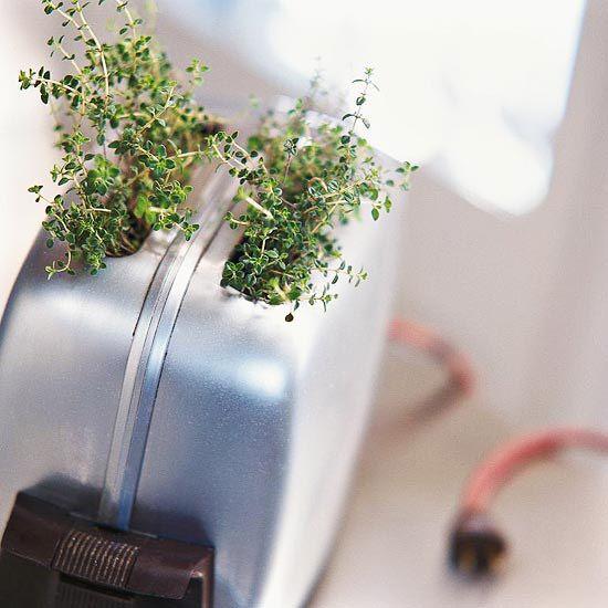 35+ Creative DIY Herb Garden Ideas --> Toaster Herb Garden