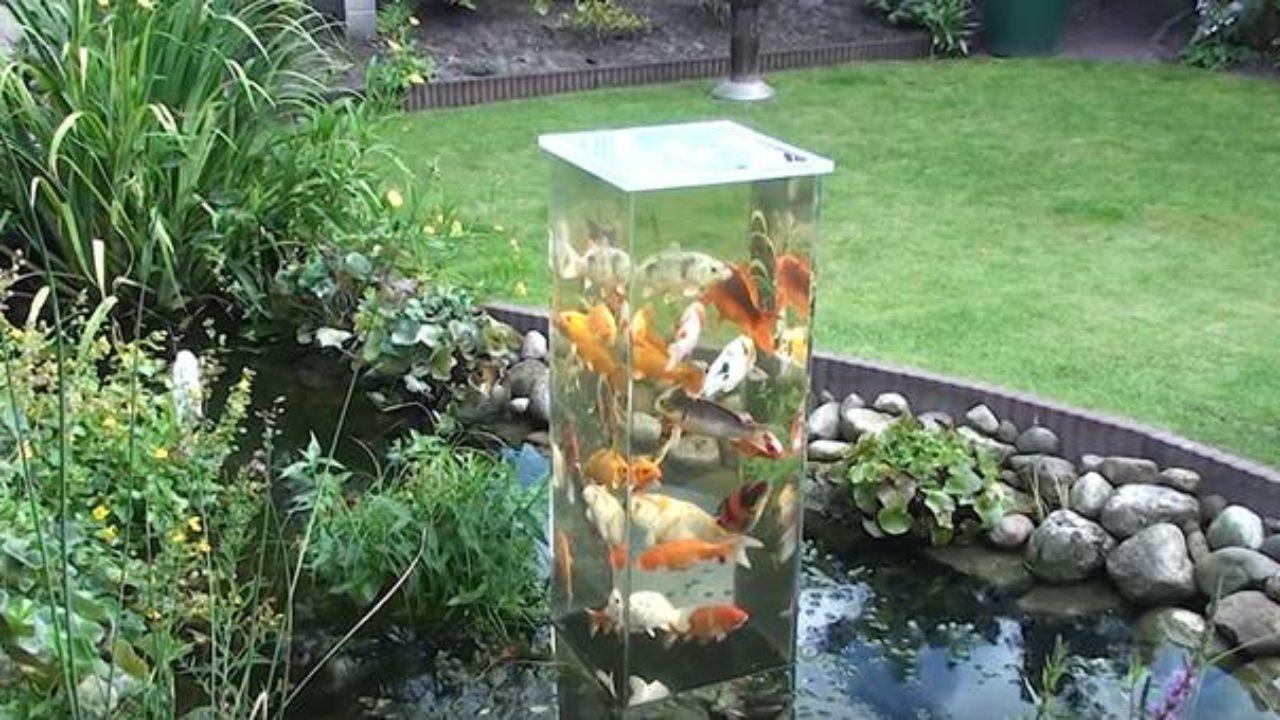 Creative Ideas , DIY Koi Observation Tower In Garden Pond