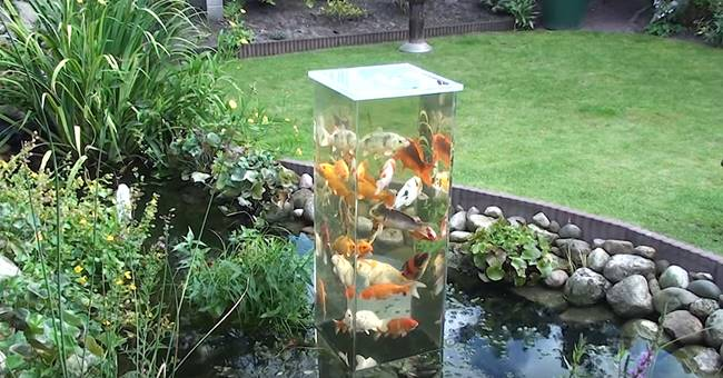 Creative Ideas - DIY Koi Observation Tower In Garden Pond