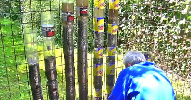 Creative ideas how to turn soda bottles into sustainable tower creative ideas how to turn soda bottles into sustainable tower garden workwithnaturefo