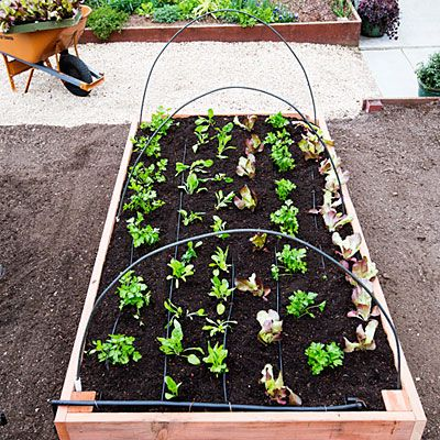 30+ Creative DIY Raised Garden Bed Ideas And Projects --> The perfect raised bed