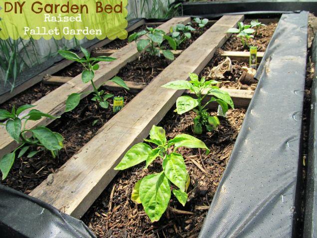 30+ Creative DIY Raised Garden Bed Ideas And Projects --> DIY Raised Wood Pallet Garden Bed