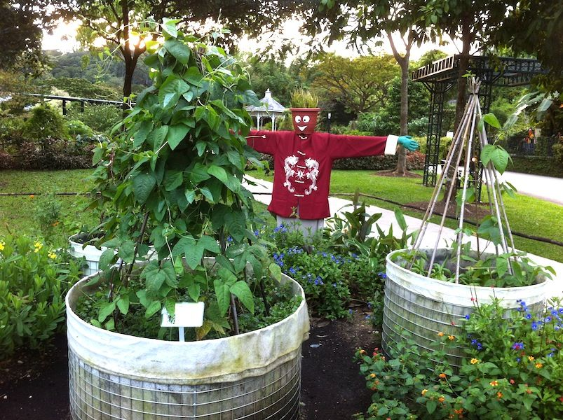 30+ Creative DIY Raised Garden Bed Ideas And Projects --> Build a raised garden bed for the Tropics