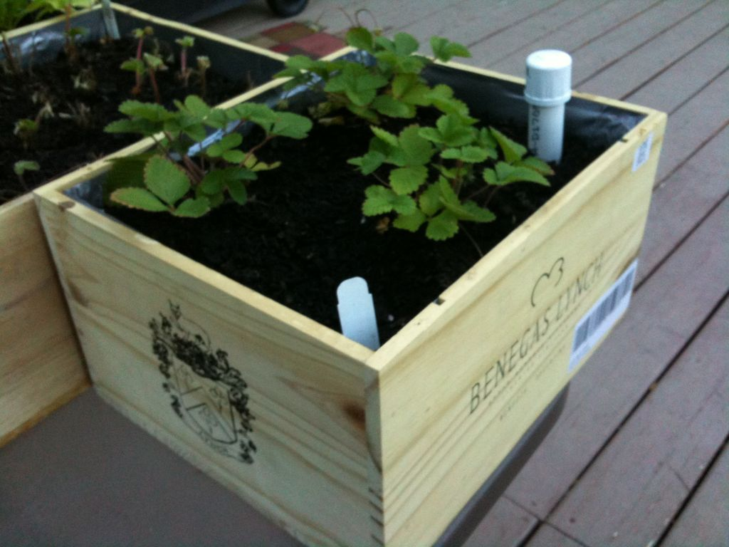 30+ Creative DIY Raised Garden Bed Ideas And Projects --> Wine box wicking planter boxes