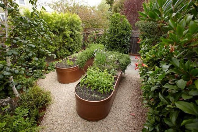 30+ Creative DIY Raised Garden Bed Ideas And Projects --> Use Water Troughs as Raised Garden Beds
