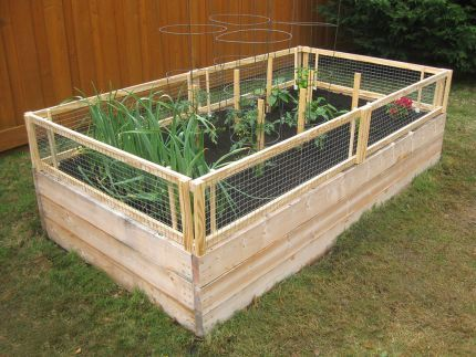 30+ Creative DIY Raised Garden Bed Ideas And Projects --> DIY Raised Bed with Removable Pest Gate