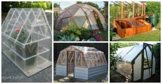 diy greenhouse plans Archives - i Creative Ideas
