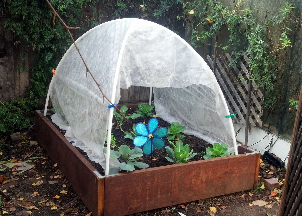 How to Make a Super Cheap Hoop-House for Winter