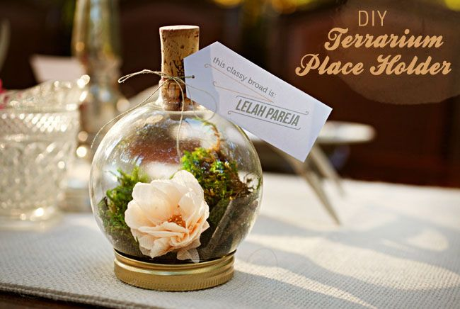DIY Terrarium Place Holder