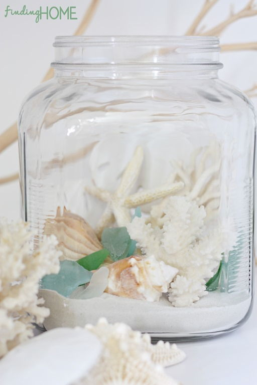 How to Make Easy Beach Terrarium