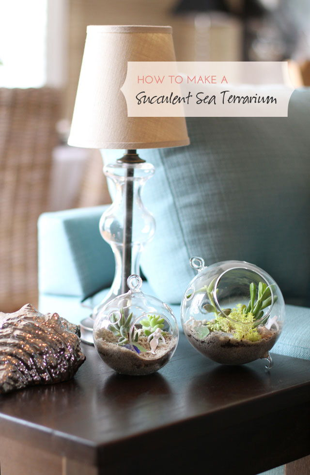 17 Creative Diy Terrarium Ideas Style Motivation