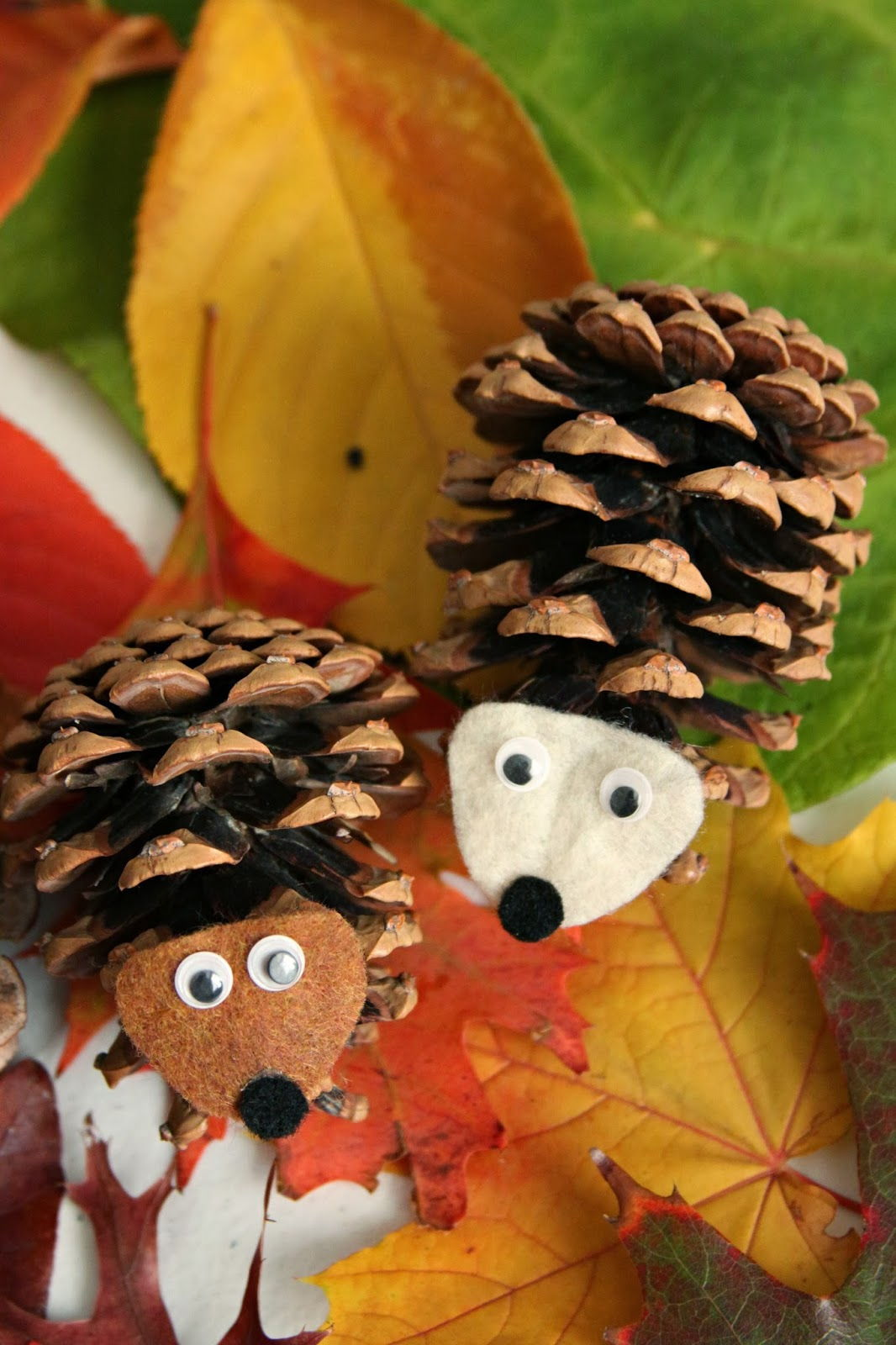 DIY Pinecone Owl and Hedgehog