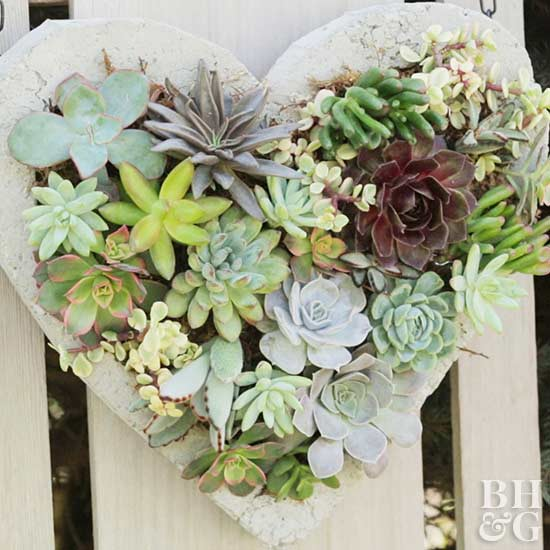 Hanging Succulent Heart